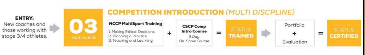 comp-intro-pathway